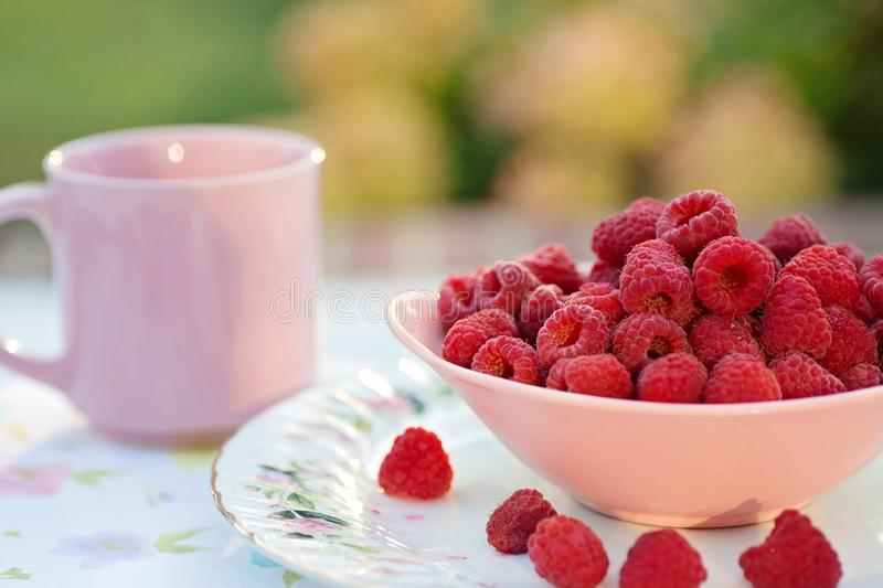 Raspberries in breakfast royalty free stock image