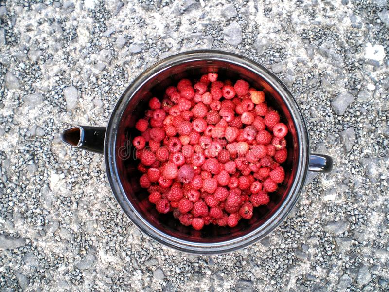 Raspberries in a container on asphalt stock photo