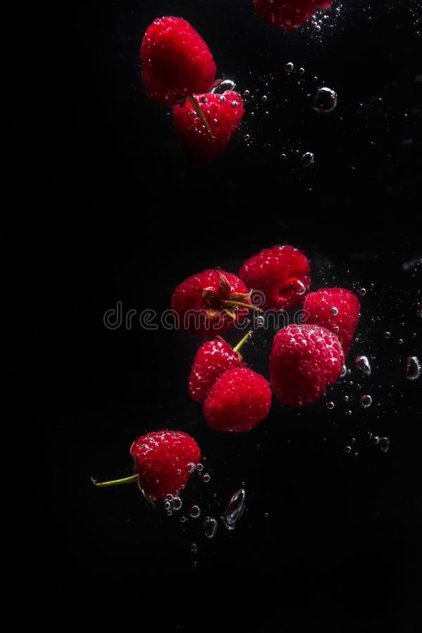 Raspberries falling in water on a black background stock photos