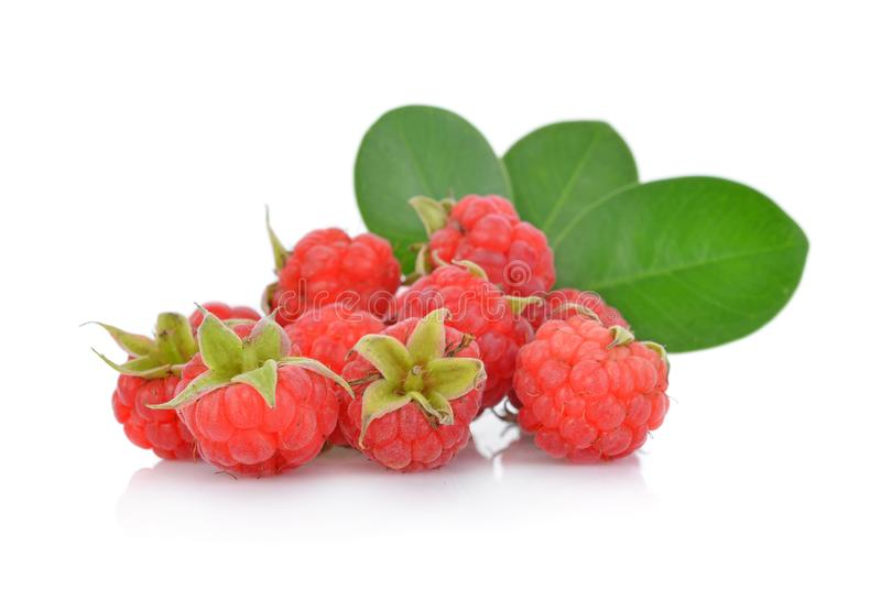 Raspberries with green leaf isolated on white background royalty free stock image