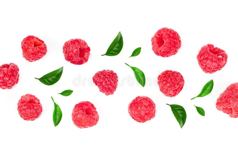 Raspberries with leaves isolated on white background with copy space for your text. Top view. Flat lay pattern. Raspberries isolated on white background with vector illustration