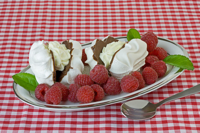 Download Raspberries and Meringues stock photo. Image of gingham - 26876868