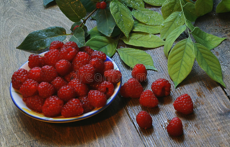 Raspberries on a wooden table and green leaves stock photos