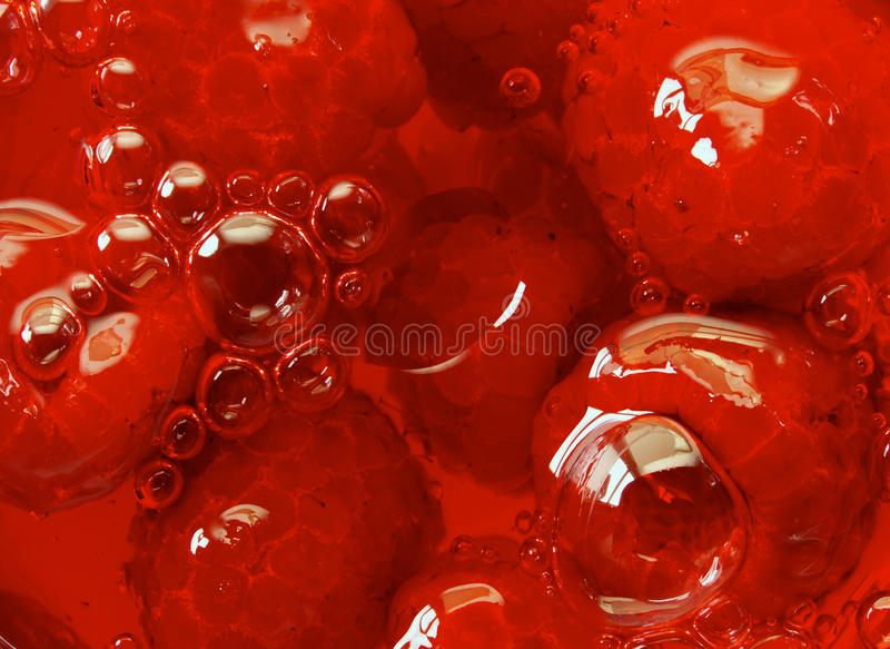 Download Raspberry stock photo. Image of fruit, bubbles, dessert - 10195316