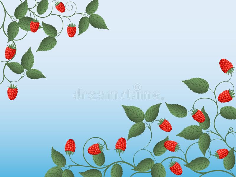 Download Raspberry stock vector. Illustration of foliage, ornament - 14889319