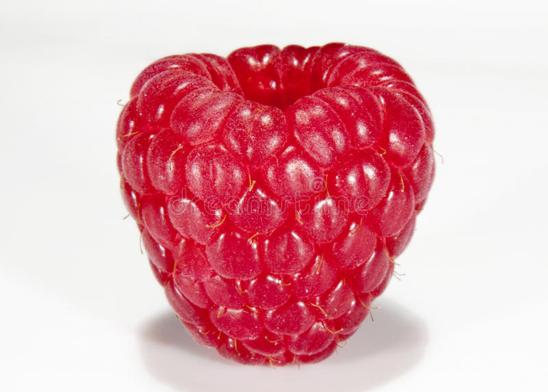 Raspberry. Isolated on white background stock photography
