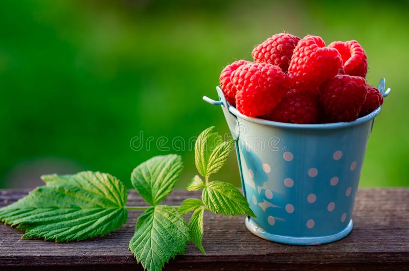 Raspberry berries closeup. Ripe raspberry berries in a small bucket on a wooden background stock photos
