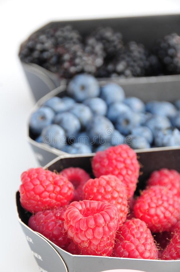 Free Raspberry-blueberry Mix Stock Photography - 15193552