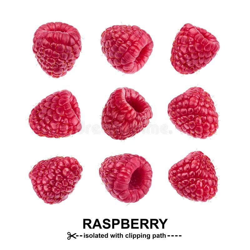 Raspberry collection. Raspberries isolated on white background with clipping path. Seamless Pattern stock photography