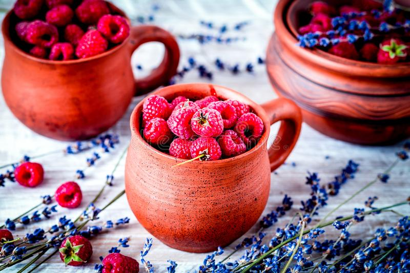 Raspberry composition in pottery with dry lavender rustic backgr. Raspberry composition in pottery pots and cups and with dry lavender bouquet on rustic desk royalty free stock images