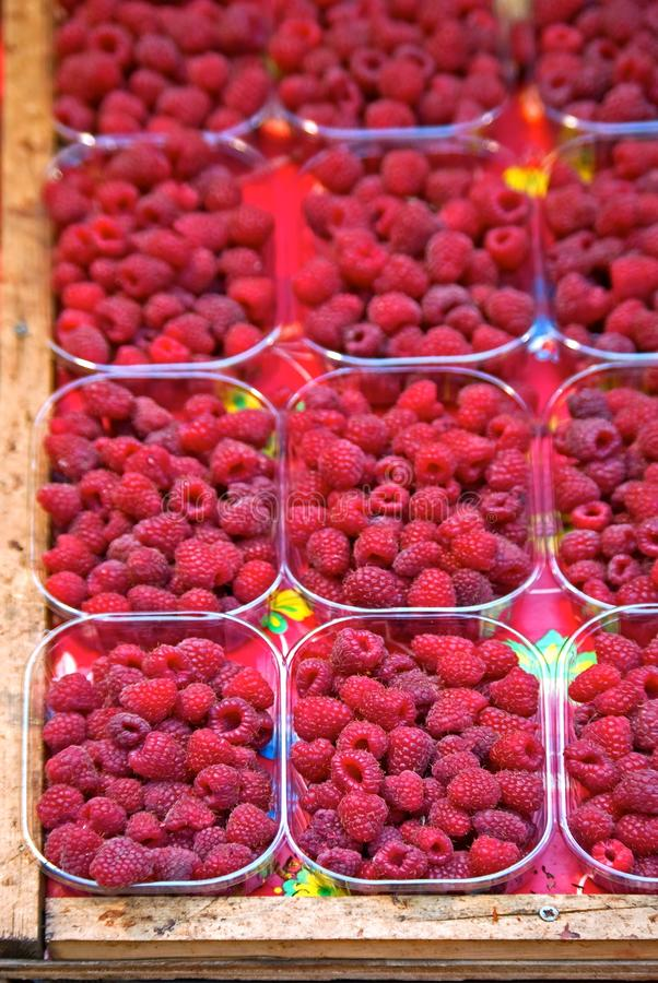 Raspberry stock photos
