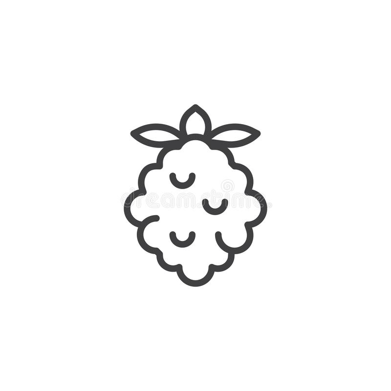 Raspberry fruit line icon stock vector. Illustration of ...
