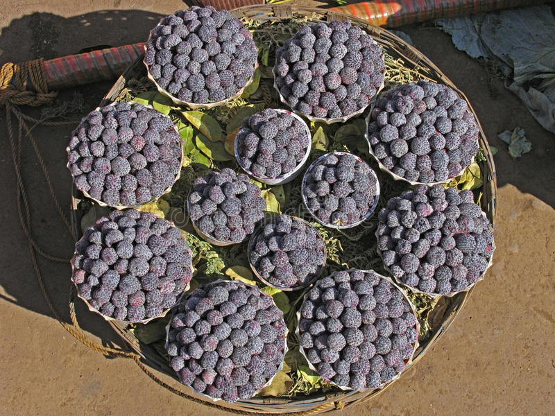 Raspberry fruits. Arranged for selling in a basket, Mahabaleshwar, Satara, Maharasthra, India royalty free stock photo