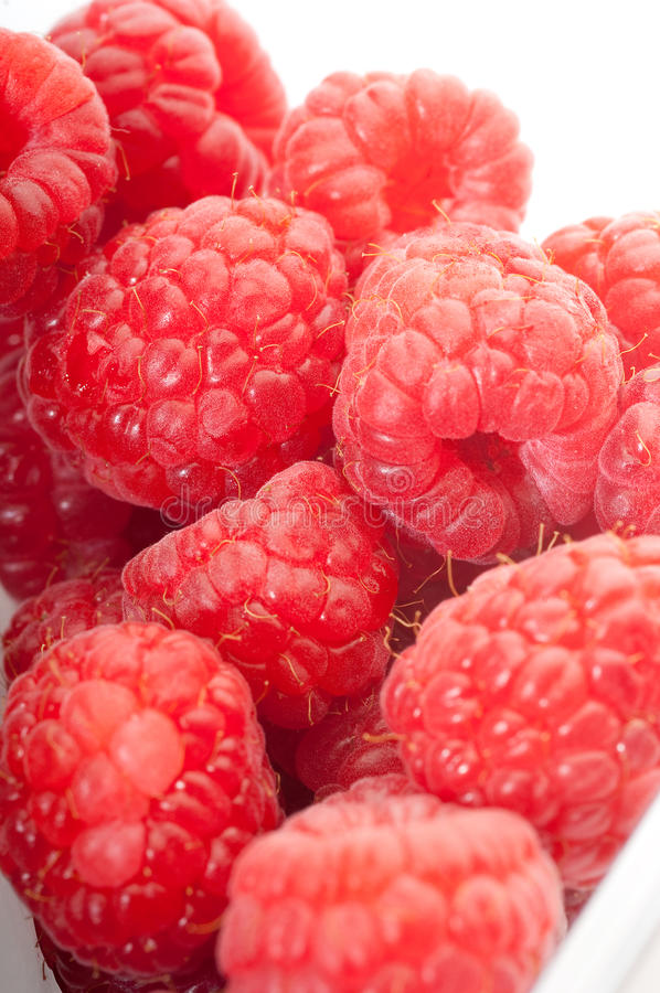 Raspberry group royalty free stock images