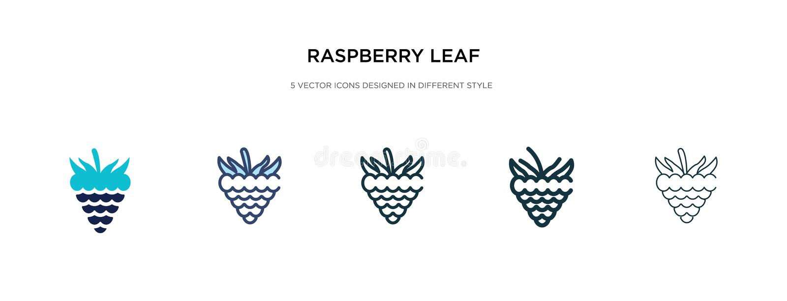 Raspberry leaf icon in different style vector illustration. two colored and black raspberry leaf vector icons designed in filled,. Outline, line and stroke stock illustration
