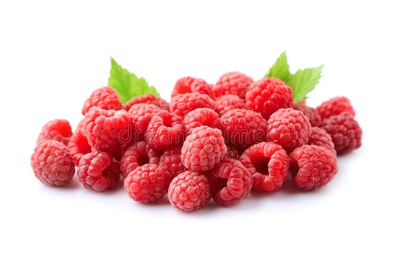 Raspberry with leaves stock image