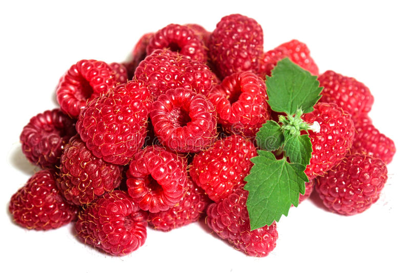 Raspberry and Mint stock images