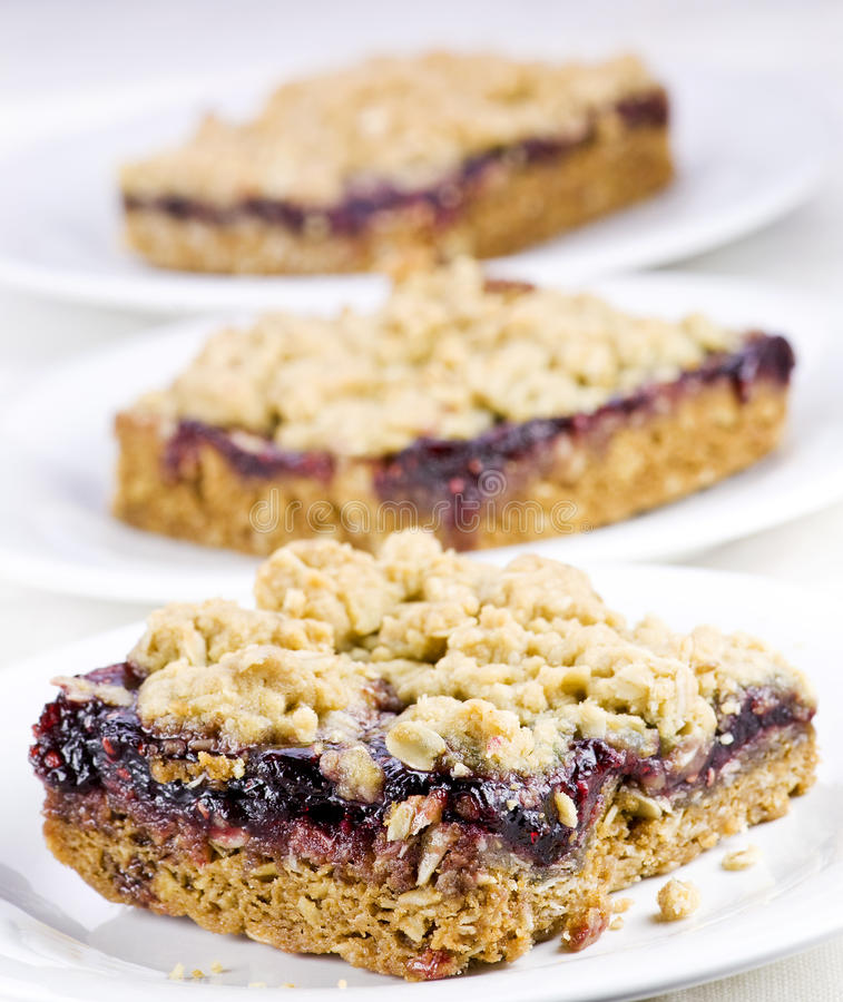 Free Raspberry Oat Bars Stock Photography - 13516742