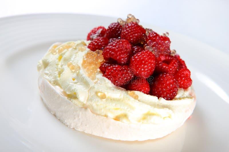 Raspberry Pavlova Dessert stock image