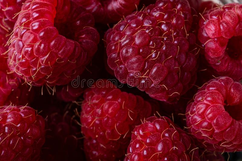 Raspberry sweet organic juicy berries, macro, texture, details. Close up royalty free stock photography