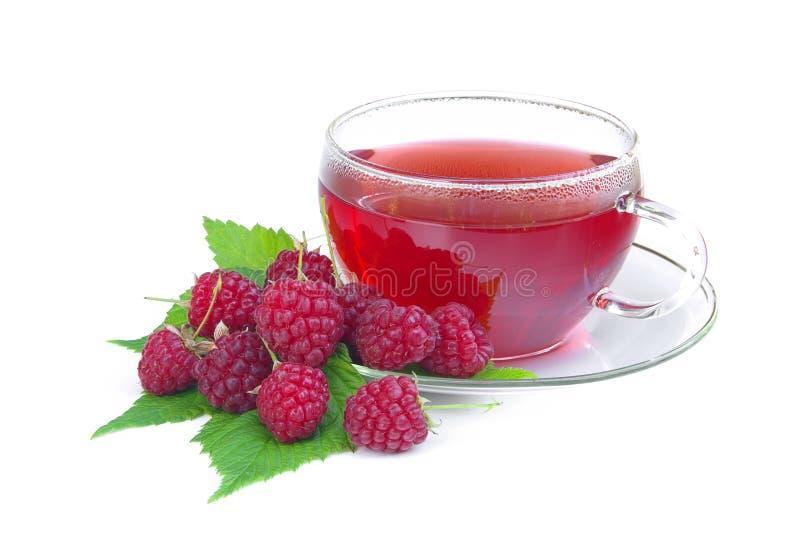 Raspberry tea 02 stock photo