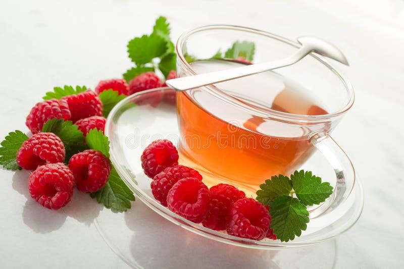 Raspberry tea stock image