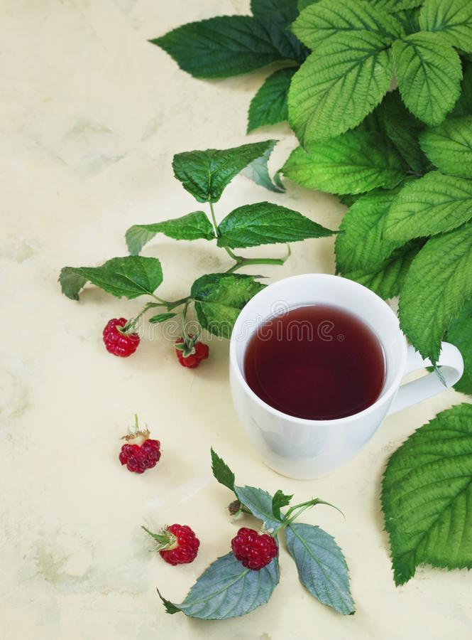 Raspberry tea with leaves and raspberries on a light background stock photography