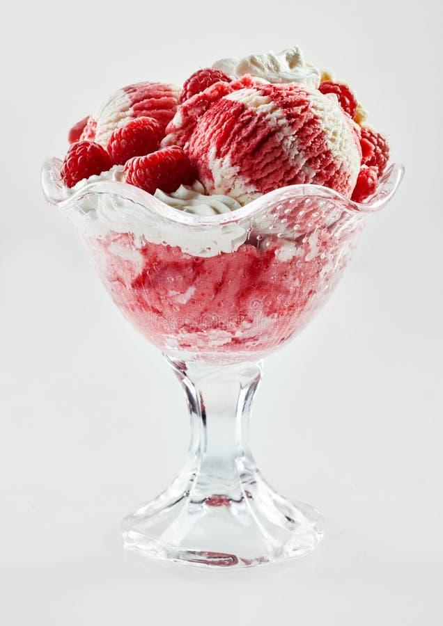 Raspberry and vanilla ice cream sundae with fruit royalty free stock photography