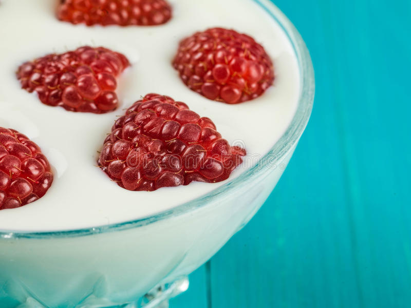 Raspberry and Yogurt Vegetarian Dessert. Against a Blue Background stock image