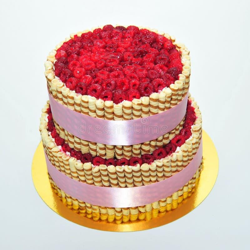 Raspbery-Kuchen stockfotografie