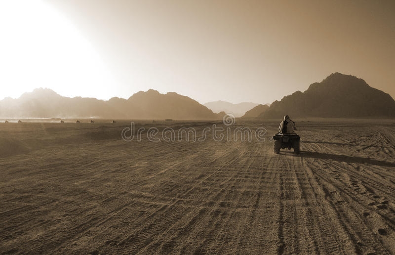 Rassemblement dans le désert image libre de droits