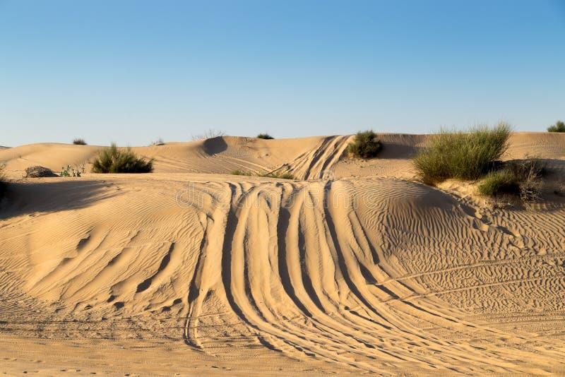 Rassemblement de voiture sur le safari de désert image libre de droits