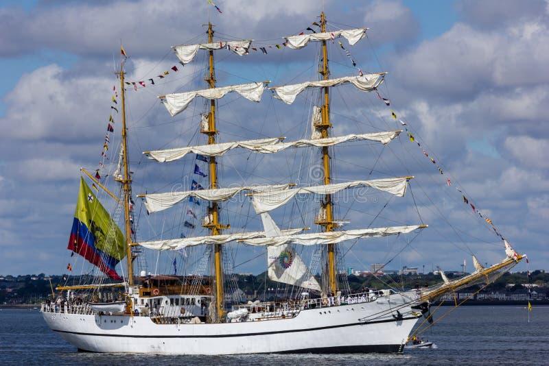 Rassen 2012 van het Schip van Dublin de Lange stock foto's