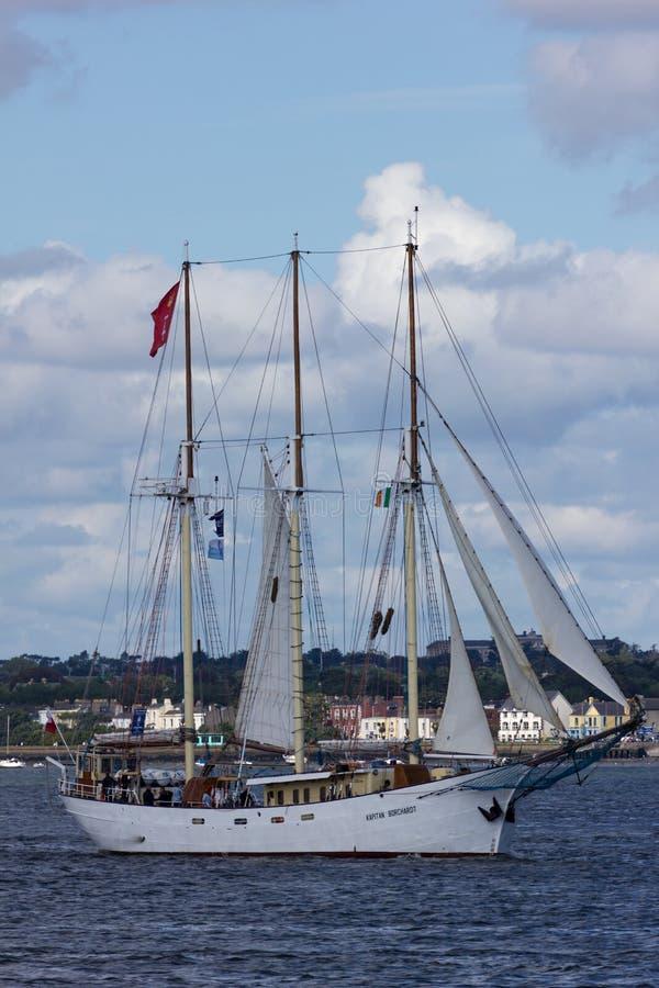 Rassen 2012 van het Schip van Dublin de Lange stock foto