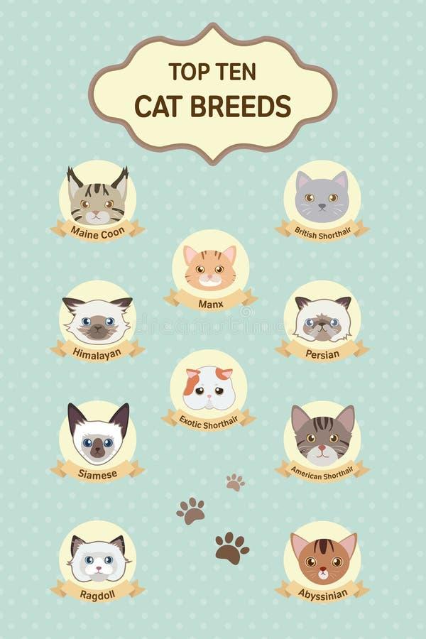 Rassen van de pastelkleur de hoogste tien kat stock illustratie