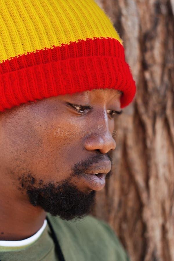 rastafarian的人 免版税库存照片