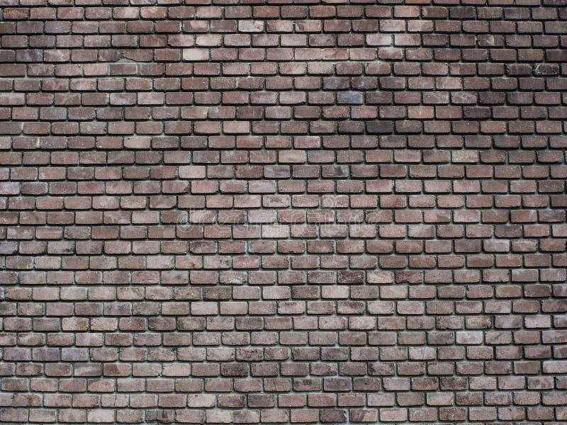 Предпосылка кирпичной стены стоковые изображения rf