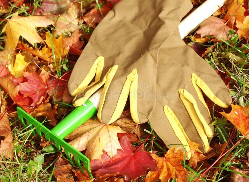 Rastrillos y guantes foto de archivo libre de regalías