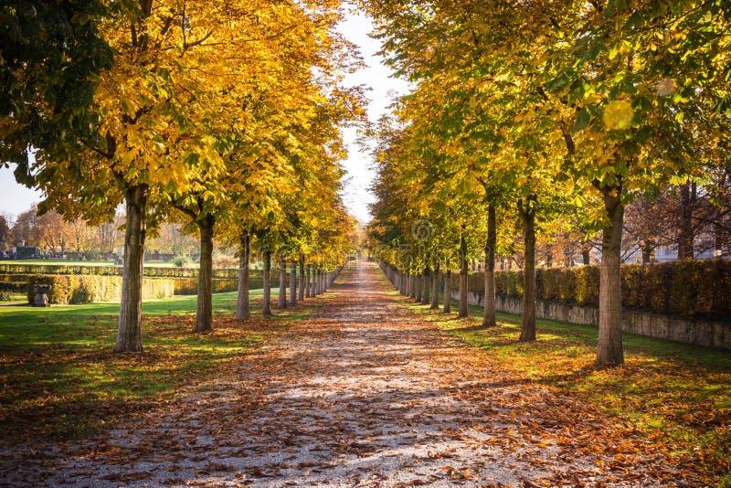 Rastro Autumn Fall Stone Dirt Walking Perspecti largo del camino del parque imágenes de archivo libres de regalías