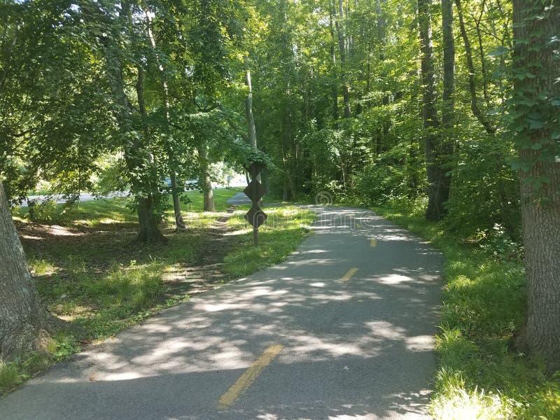 Rastro biking del asfalto con los árboles y una trayectoria del atajo a través de la hierba fotografía de archivo
