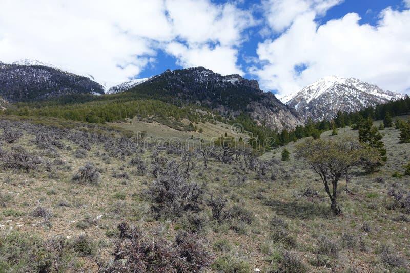 Rastro-cabeza para subir el Mt Borah fotografía de archivo libre de regalías