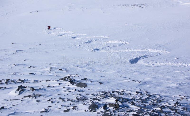 Rastro de esquiador que entra abajo en nieve fresca imágenes de archivo libres de regalías