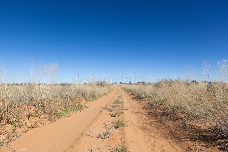Rastro de Kalahari imagen de archivo