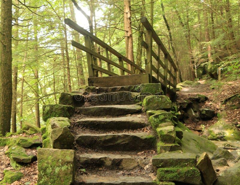 Rastro de Kildo - parque de estado del molino de McConnells - Portersville, Pennsylvania fotos de archivo libres de regalías