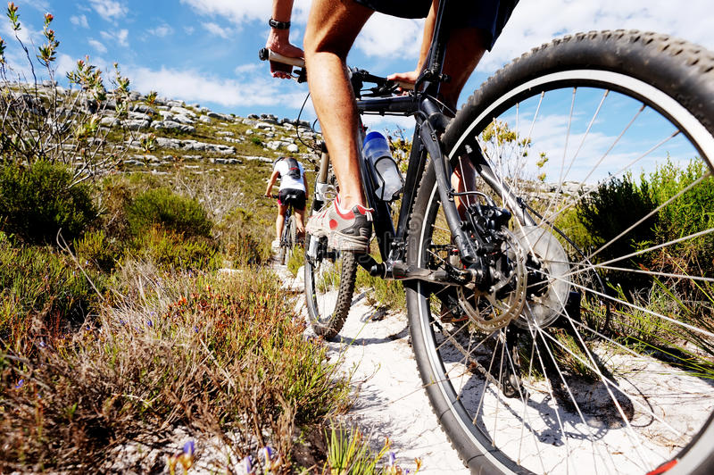 Rastro de la bici de montaña fotos de archivo