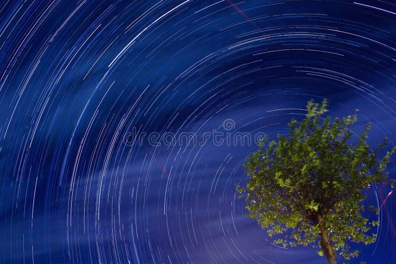 Rastro de la estrella imagenes de archivo