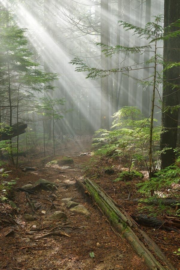 Rastro de Lynn Peak con Sun Ray foto de archivo