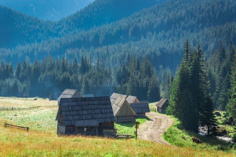 Rastro de montaña entre las cabañas en Tatras en la salida del sol, Polonia imagen de archivo