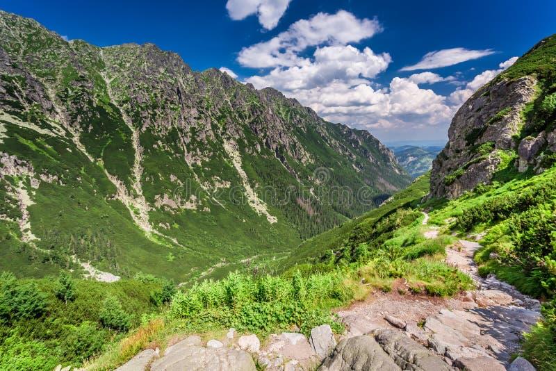 Rastro de montañas estrecho que lleva el pico, Polonia imágenes de archivo libres de regalías