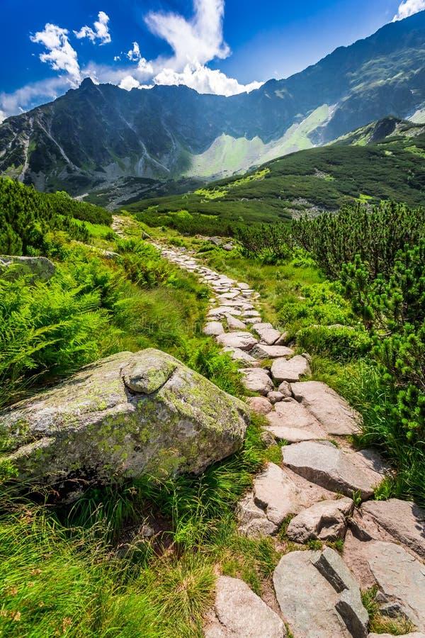 Rastro de montañas estrecho que lleva el top foto de archivo